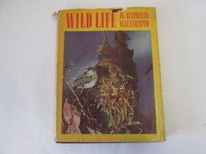 Good-Wild-Life-in-Australia-Illustrated-Charles-Barrett-FRZS-1111-01-01-Cond