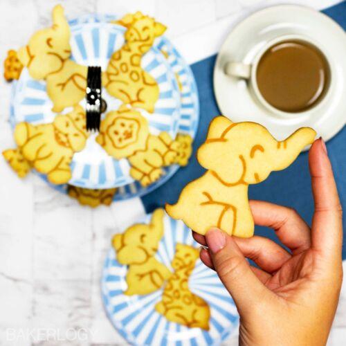 |zoo Lion, Elephant, Hippopotamus, Giraffe Set of 4 Baby Safari cookie cutters