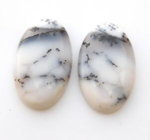 23-20Ct-Pair-Natural-Dendritic-opal-Cabochon-Loose-Gemstone-Oval-14X22-MM-B225
