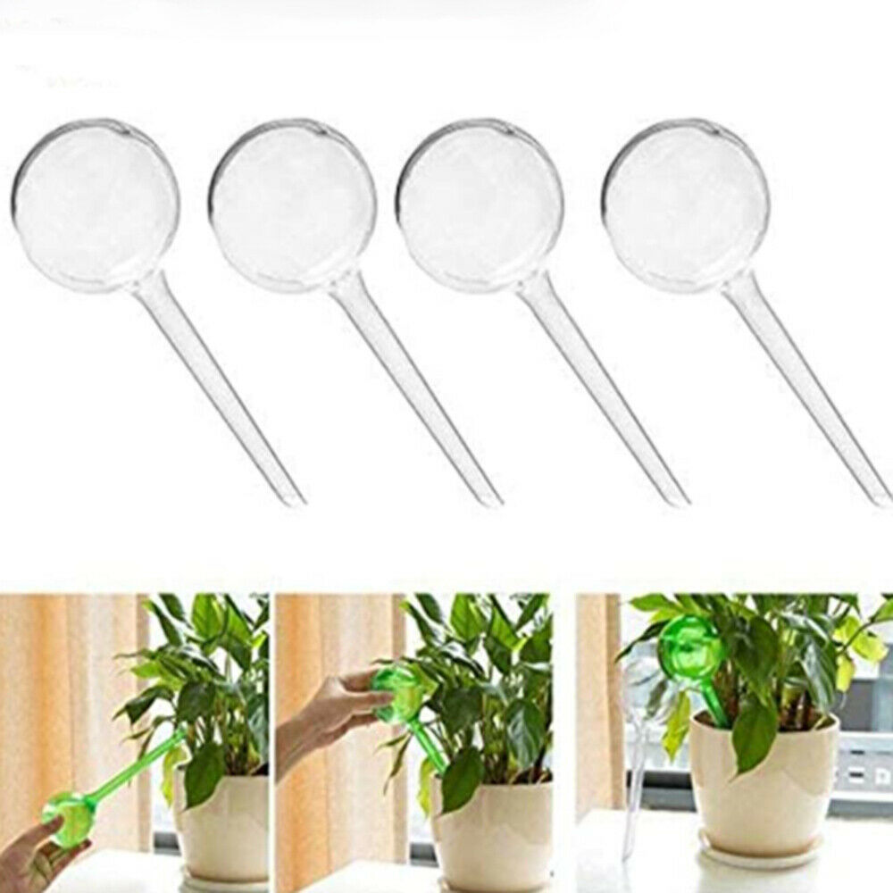  5pcs Automatic Plant Self Watering Feeder Plastic Ball Plant Water Feeder can
