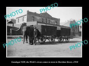 OLD-LARGE-HISTORIC-PHOTO-OF-GUNDAGAI-NSW-THE-WIRTH-CIRCUS-ELEPHANT-c1930