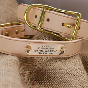 Personalised-Leather-Dog-Collars-Pet-Name-ID-Collar-Tags-Engraved-Gold-Buckle