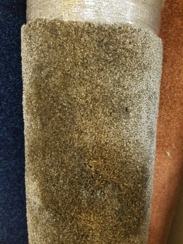 Carpet Remnant Brown 2m x 2.54m Combi Back Thick Soft Touch Saxony Roll End