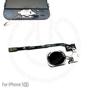 Para-Apple-iPhone-5S-amp-iPhone-se-Inicio-boton-Flex-Negro-principal-negra-de-repuesto