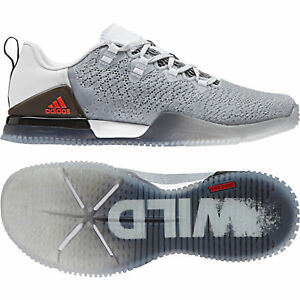 Training Shoes Model BB1557 MSRP $120
