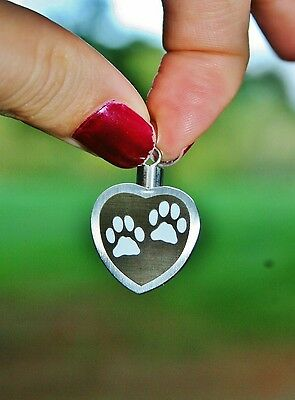 Silver Paw Print Heart Cremation Pendant Urn Holds Pet Ashes Dog Cat Memory Loss