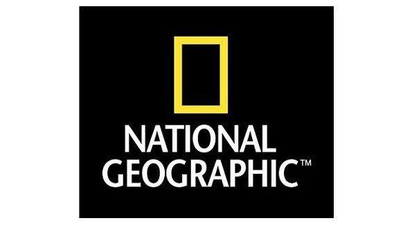 NATIONAL GEOGRAPHIC BABY PLUSH HEDGEHOG 16CM STUFFED ANIMAL TOY TOY TOY - BNWT 7b18aa