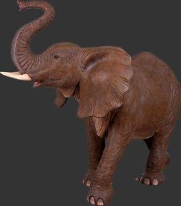 BABY-ELEPHANT-Life-Size