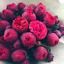 10-Pieces-Graines-Bonsai-Pivoine-Plantation-verdure-fleurs-Terrasse-Cour-Jardin-Nouveau miniature 1