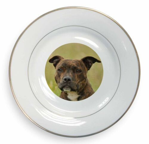 Staffordshire Bull Terrier Dog Gold Rim Plate in Gift Box Christmas , ADSBT15PL