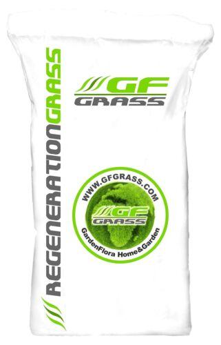 Semi per prato dopo semina 15kg GF rigenerazione GRASS Erba Semi Prato Sementi Prato Erba