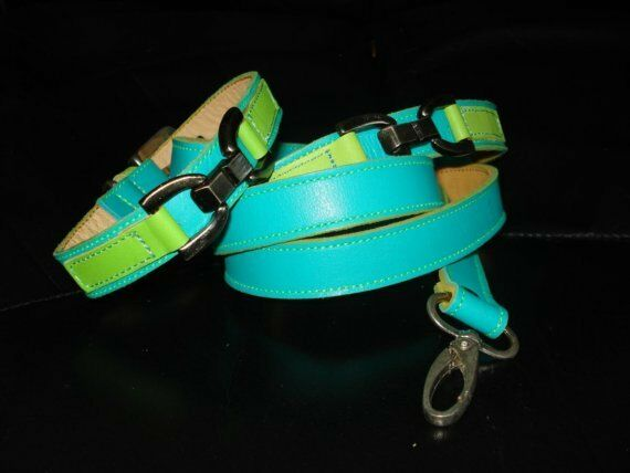 Cool Leather Turquoise and Lime Dog Collar And leash Set