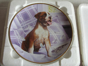 Boxer Puppies Dog Collector Plate Danbury Mint Simon Mendez Feather Fun  CERT - yellow belly county, United Kingdom - Boxer Puppies Dog Collector Plate Danbury Mint Simon Mendez Feather Fun  CERT - yellow belly county, United Kingdom