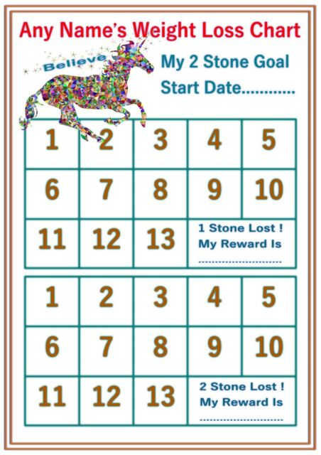 Personalised Reusable Diet Weight Loss Chart Planner 2 Stone