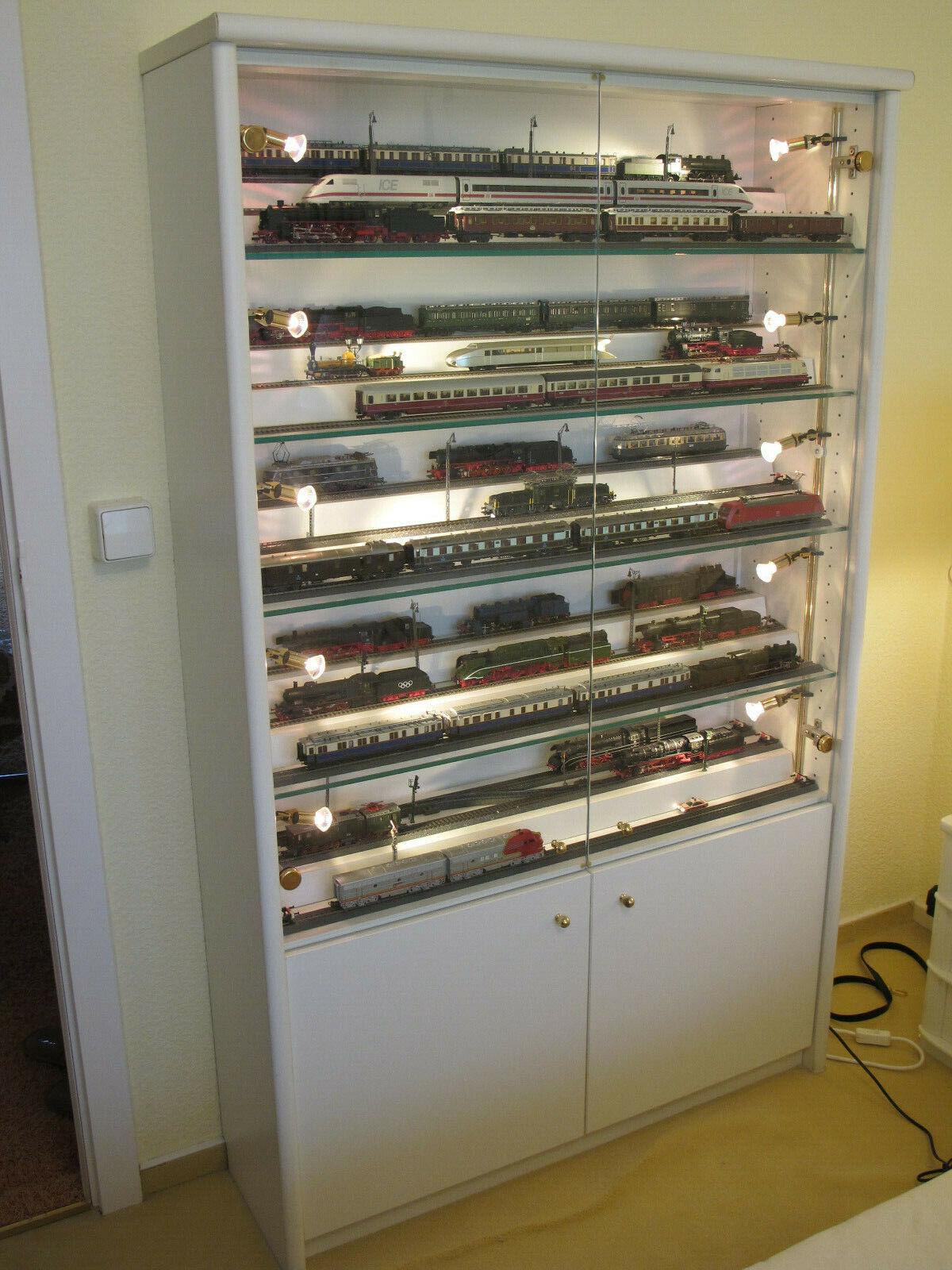 Da collezione vetrina per modellololismo ferroviario h0