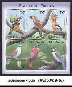 Gambie - 2000 Oiseaux Des Tropiques-bloc-feuillet Neuf Sans Charnière-afficher Le Titre D'origine