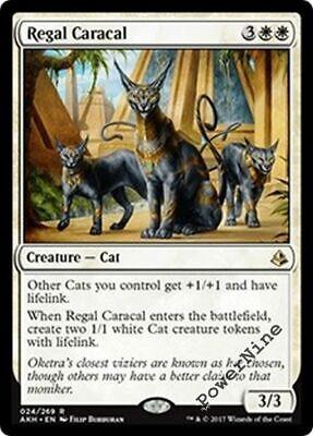 x4 Amonkhet Near Mint Regal Caracal English -BFG- MTG Magic 4x