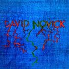 David Novick - Vinyl LP Drag City
