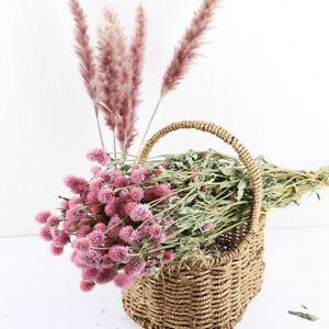 Natuerlich-Globe-Amaranth-Getrocknet-Blume-Fake-Pflanze-Hochzeit-Party-Home-Decor