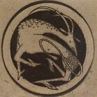 Warmer by The Operacycle (CD, Feb-2001, Hush)
