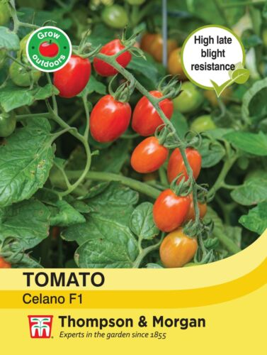 Thompson /& Morgan 5 Seeds Tomato Celano Vegetable