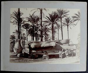 Photo-Egypte-Albumen-Statue-colossale-a-Memphis-1880