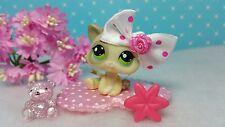 Littlest Pet Shop Katze #1074 Baby Kitten Cat & Zubehör  Accessoires ☆ HTF Rare