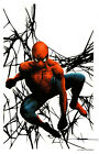 JAE LEE AMAZING SPIDER-MAN SIGNATURE EDITION ART PRINT - SDCC 2014