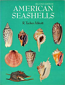 AMERICAN-SEASHELLS-2nd-edition-by-R-Tucker-Abbott-1974