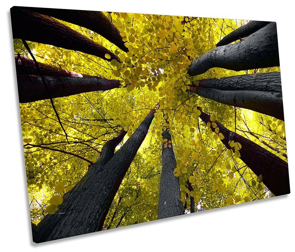 Gelb Tree Tops Floral Framed SINGLE CANVAS Drucken Wand Kunst