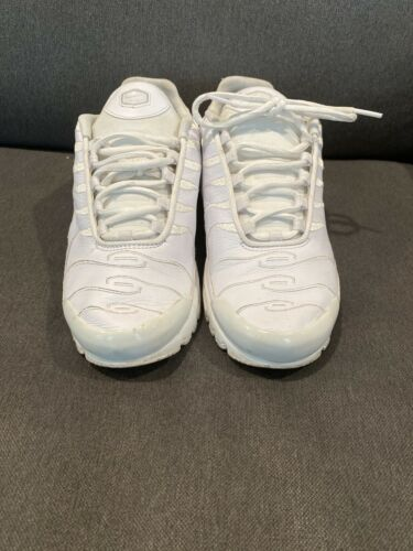 Nike Air Max Plus TN Triple White AJ2029-100 men s