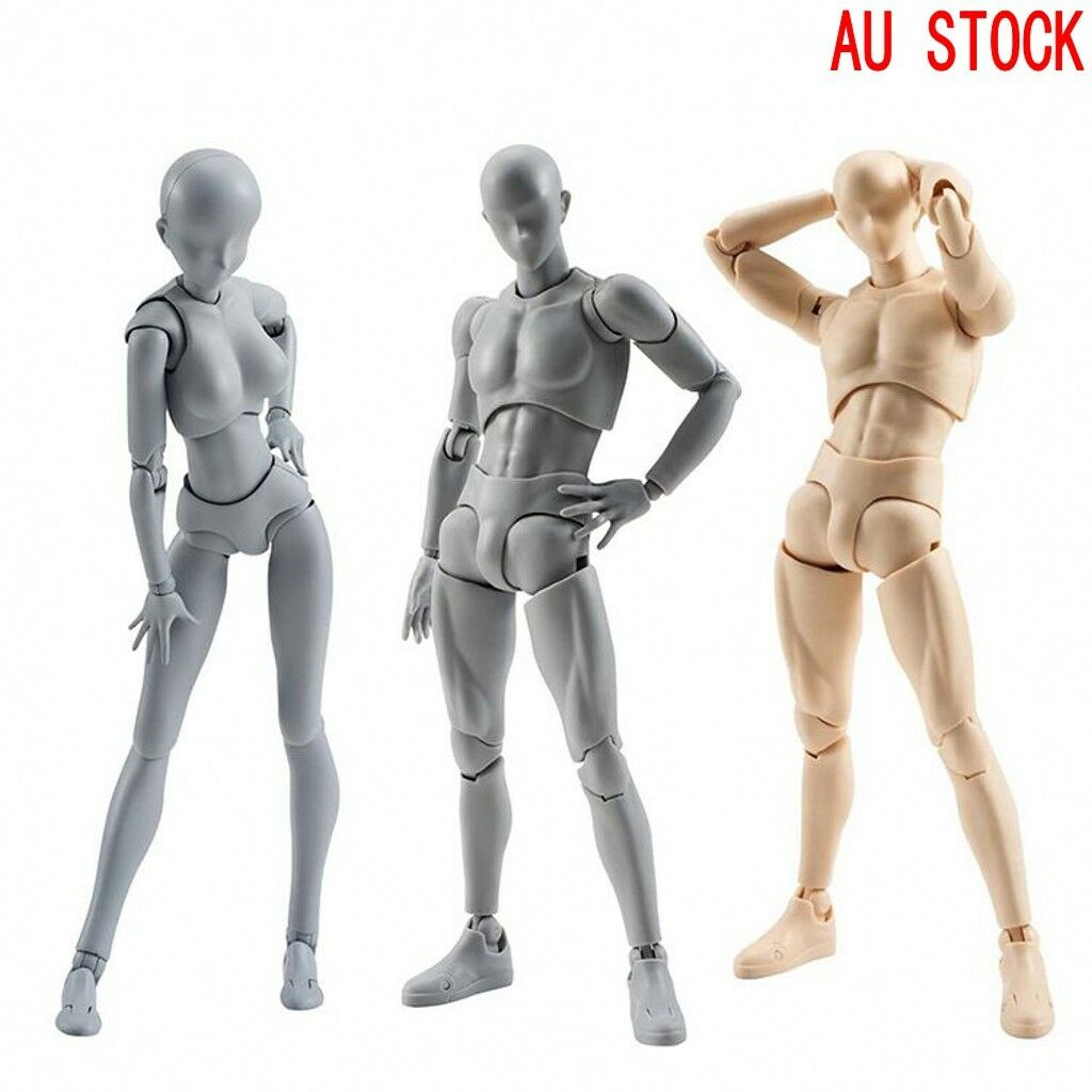 SHF Male Body-Kun DX Body-Chan DX Action PVC Figure Toys Grau Farbe Ver. Box Set