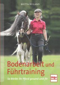 Reiland-Bodenarbeit-und-Fuehrtraining-so-bleibt-Ihr-Pferd-gesund-Ratgeber-Buch