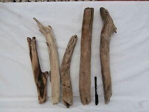 Legni-di-mare-grosso-largo-1599-fai-da-te-bricolage-shabby-arte-deco-fioraio