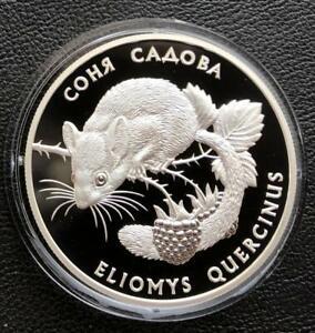 Eliomys quercinus Ukrainian red book Ukraine 2019 1 zlotnik Garden dormouse