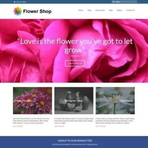 "FLOWERS Website Business For Sale - £296.00 A SALE. ""9000 Visitors a Month"""