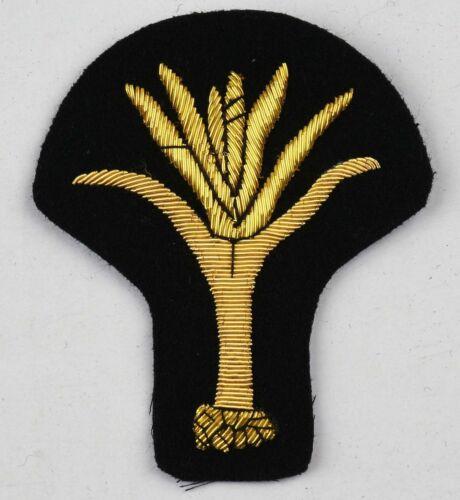Welsh Guards Regiment Blazer Badge Wire Bullion LI-EMB-0021