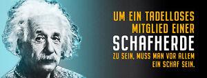 Albert Einstein Collage Saying 14 Tin Sign Shield 10 X 27 CM K1572