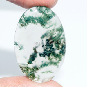 Cts-26-45-Natural-Moss-Agate-Cab-Oval-Exclusive-Cabochon-Loose-Gemstones