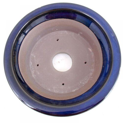 bleu 22026 Bonsai-Coque environ 22 ø x 6,5 cm