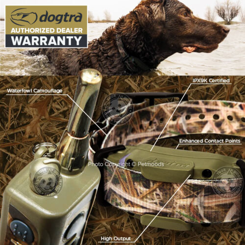 Dogtra 1900S Wetlands Special Edition Dog Training Camo Collar IPX9K Certified