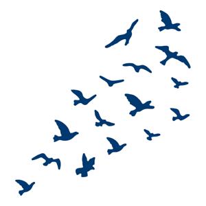"Tattered Lace /""aves en vuelo/"" Die-TLD0233 de colección de desfile de Paisley"