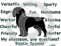 Boykin Spaniel Dog My Obsession, Questions? T-shirt Choice Size Color