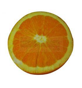 Orange-Cushion-Fruit-round-40-CM