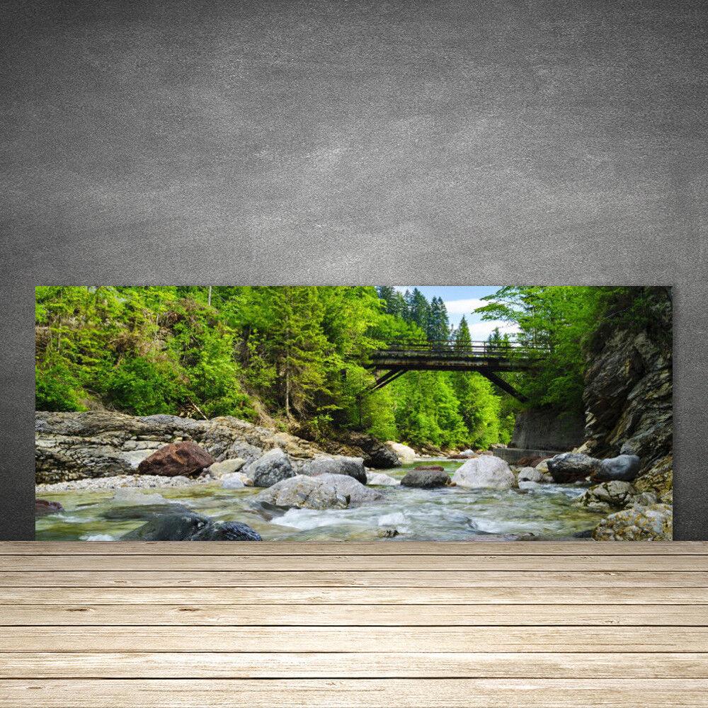 Crédence de cuisine en verre Panneau 125x50 Paysage Forêt Pierres Pont Lac