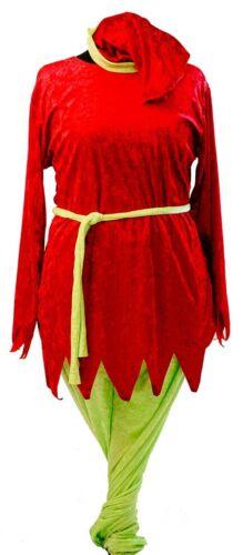 NUOVO Rosso E Verde Elfo di Natale-Santa /'s Helper-PIXIE-Unisex Costume