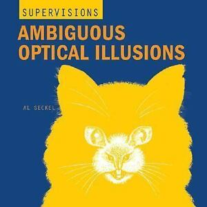 ambiguous optical illusions super visions