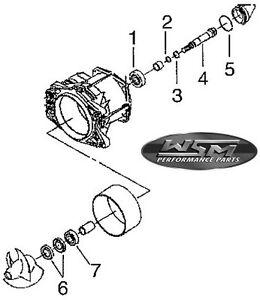 Jet Pump Repair Kit PWC WSM Polaris Kit roulement de turbine Jetski