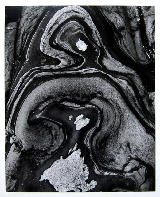 "BRETT WESTON Signed 1970's Original Photograph ""Abstract Image"""