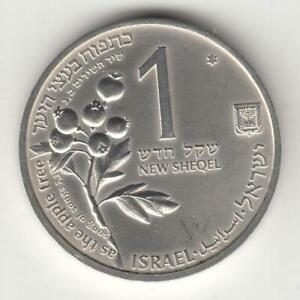 Israel-1993-Holy-Land-Wildlife-Hart-and-Apple-BU-Coin-14-4g-Silver-Off-Qality-2